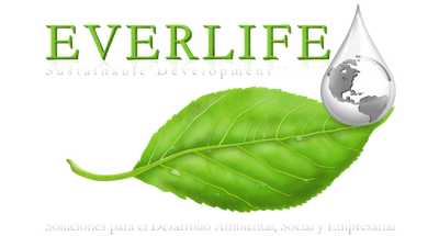 Grupo Everlife logo